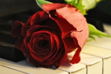 tumblr_static_vintage-red-rose-and-piano-music-facebook-cover