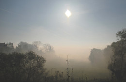 misty-morning-1365737